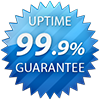 99.9% Server Uptime